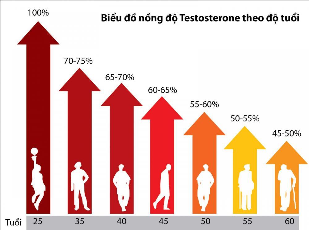 Testosterone - hormone của tình dục và nam tính